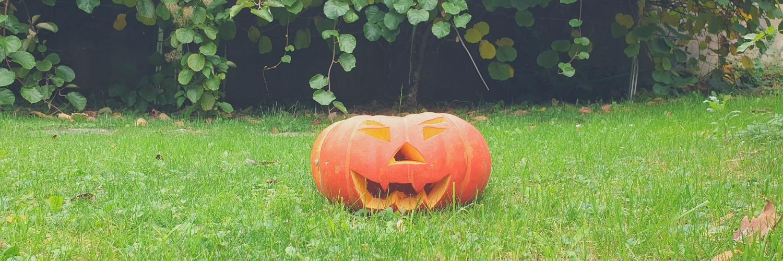 Halloween : quelles activités réaliser avec son enfant?