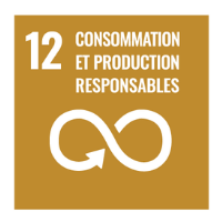 objectif-12-une-consommation-et-production-durables-1