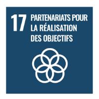 objectif-17-partenariats-pour-la-realisation-des-objectifs